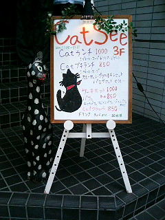 「cat see」