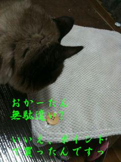 20110119173148_11